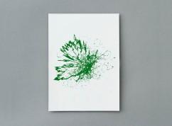 studioeo_boreal_green