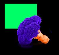 nicholas-ross-3
